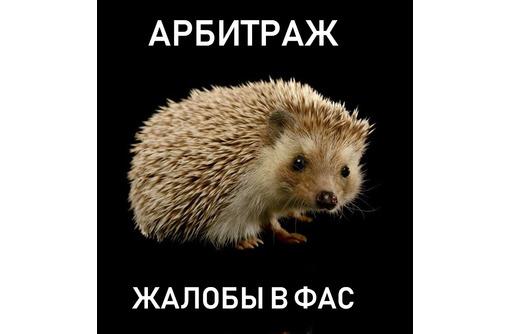 Жалобы в ФАС, обжалование требований госзаказчика, представитель в арбитраже, фото — «Реклама Севастополя»
