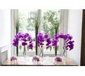 Thumb_big_florist-designer010