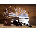 Thumb_big_law-profession1