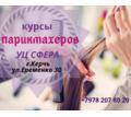 Thumb_big_20190212_103528_0001