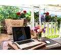Требуются сотрудники для продвижения Онлайн школы в сети интернет - Работа на дому в Севастополе