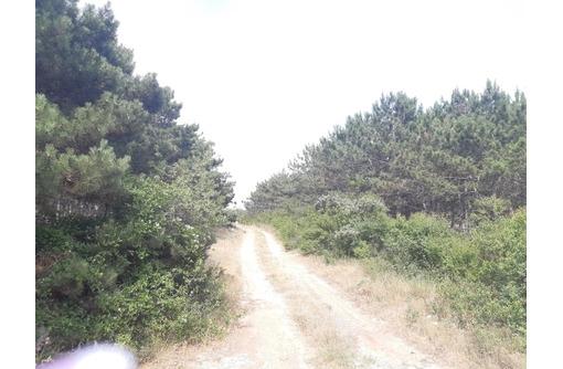 Участок 10 сот Фиолент кооп. Рябинушка 700тыс, фото — «Реклама Севастополя»