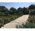 Продам добротный дом с фруктовым садом  в с.Ароматное Бахчисарайского района - Дома в Бахчисарае