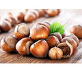 Thumb_big_eda-orehi--kashtany--kakao-boby-funduk-1424712