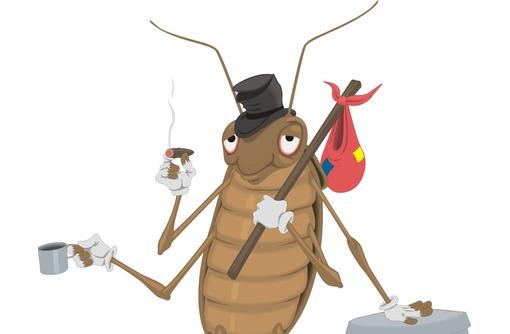 Уничтожение клопов и тараканов. Крым, фото — «Реклама Алупки»