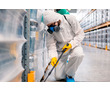 Дезинсекция. Работаем добросовестно и качественно!, фото — «Реклама Коктебеля»