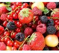 Thumb_big_depositphotos_30739871-stock-photo-berry-assor
