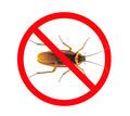 Дезинсекция! Уничтожение тараканов в Алупке! Гарантия 100 % результата! Безопасно! Без запаха!Жмите! - Клининговые услуги в Алупке