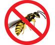 Дезинсекция!Уничтожение ос и шершней в Алуште!Гарантия 100 % результата!Безопасно!Без запаха! Жмите!, фото — «Реклама Алушты»