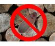 Дезинсекция! Уничтожение короеда в Алуште! Гарантия 100 % результата!Безопасно! Без запаха! Жмите!, фото — «Реклама Алушты»