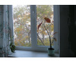 Продам 3-комнатную квартиру, фото — «Реклама Севастополя»
