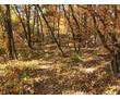 Земельный участок в заповедной зоне на южном берегу., фото — «Реклама Алушты»