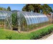 Сотовый поликарбонат прозрачный Plastilux (Эконом) 8 мм 5044 руб/лист, фото — «Реклама Феодосии»