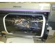 Печать на пленке Oracal, фотокачество, фото — «Реклама Севастополя»