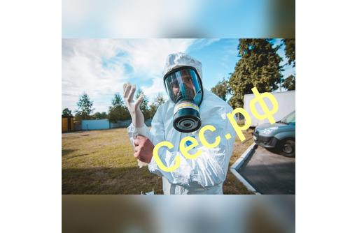 Дезинфекция для профилактики заболеваний , вызываемых короновирусами и других вирусных заболеваний!, фото — «Реклама Приморского»