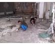 Вывоз мусора, хлама, грунта. Демонтаж. Быстро и качественно. <24/7>, фото — «Реклама Севастополя»