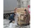 Нужна перевозка, горят сроки., фото — «Реклама Севастополя»