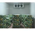 Холодильные Установки для Овощехранилищ.Доставка,Монтаж - Продажа в Крыму