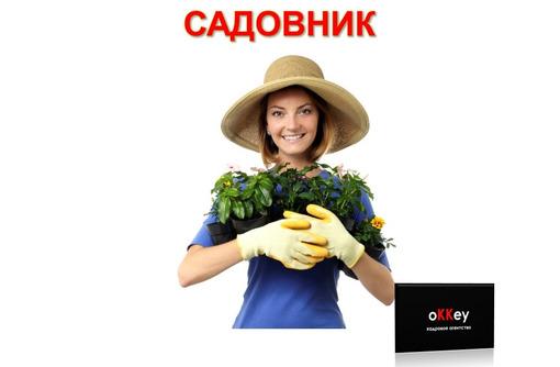 Садовник с опытом работы, фото — «Реклама Севастополя»