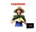 Садовник с опытом работы - Рабочие специальности, производство в Севастополе