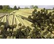 Продам опоры ЛЭП деревянные и СВ ж\б, фото — «Реклама Черноморского»