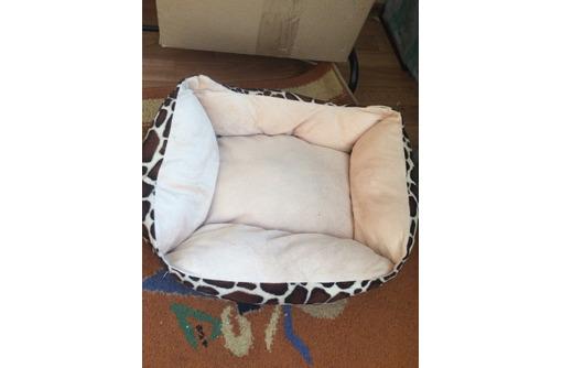 Лежак для собаки.Место для собак, фото — «Реклама Евпатории»