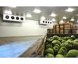 Монтаж Холодильного Оборудования Морозильных Камер, фото — «Реклама Симферополя»