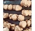 Сетка Рабица оцинкованная в рулонах - Металл, металлоизделия в Армянске