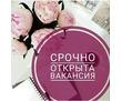 Консультант интернет магазина по работе с входящими заявками, фото — «Реклама Севастополя»