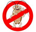 Дератизация, дезинсекция, дезинфекция. Уничтожение насекомых и грызунов. - Клининговые услуги в Бахчисарае