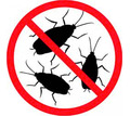 Дератизация, дезинфекцмя, дезинсекция. Уничтожение насекомых и грызунов. Дезинфектор. - Клининговые услуги в Белогорске