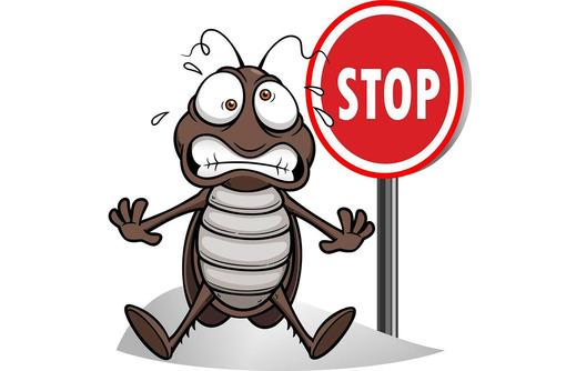 Дезинфектор. Дератизация, дезинсекция, дезинфекция. Полное уничтожение насекомых и грызунов., фото — «Реклама Алупки»