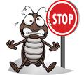 Дезинфектор. Дератизация, дезинсекция, дезинфекция. Полное уничтожение насекомых и грызунов. - Клининговые услуги в Евпатории