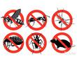 Дезинфектор. Дератизация, дезинсекция, дезинфекция. Полное уничтожение насекомых и грызунов., фото — «Реклама Алушты»