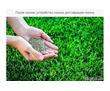 Покос травы, спил деревьев, обрезка ежевики, дробление в щепу. Нал/безнал., фото — «Реклама Севастополя»