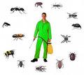 Уничтожение насекомых и грызунов. Дезинфекция, дезинсекция, дератизация. Профессионал Дезинфектор. - Клининговые услуги в Старом Крыму