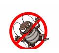 Профессиональные услуги дезинфектора. Уничтожение грызунов, насекомых и микроорганизмов. Дезинфекция - Клининговые услуги в Коктебеле