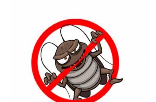 Профессиональные услуги дезинфектора. Уничтожение грызунов, насекомых и микроорганизмов. Дезинфекция, фото — «Реклама Красногвардейского»