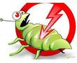 Дезинфекция, дератизация, дезинсекция. Истребление тараканов, клещей, клопов, мышей, крыс, кротов, фото — «Реклама Белогорска»