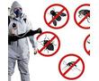 Дезинфекция. Услуги профессионального дезинфектора. Уничтожаем насекомых, грызунов, микроогрганизмы, фото — «Реклама Алупки»