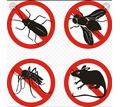 Дезинфекция. Услуги профессионального дезинфектора. Уничтожаем насекомых, грызунов, микроогрганизмы - Клининговые услуги в Партените