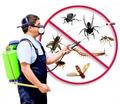 Дезинфекция, дератизация-уничтожение грызунов, дезинсекция-уничтожение насекомых. Дезинфектор. - Клининговые услуги в Партените