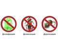 Дезинфектор. Уничтожение тараканов, клопов, клещей, муравьёв, ос, пауков, мышей, крыс, кротов. - Клининговые услуги в Белогорске