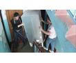 Автотранспорт. Грузчики. Вывоз мусора. Переезды, фото — «Реклама Севастополя»