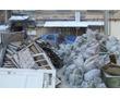 Вывоз и утилизация различных видов мусора. 24/7, фото — «Реклама Севастополя»