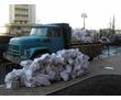 Вывоз строительного мусора, хлама, грунта. Быстро и качественно. 24/7, фото — «Реклама Севастополя»