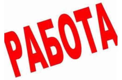 IT менеджер (управление операционными системами), фото — «Реклама Севастополя»