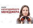 Требуется категорийный менеджер, фото — «Реклама Севастополя»