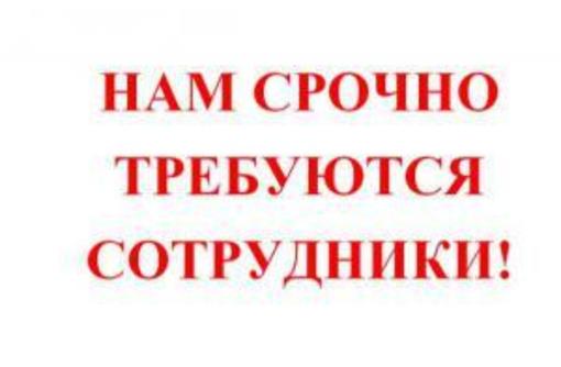 Требуется помощник для работы в интернете, фото — «Реклама Севастополя»