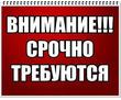 Администратор магазина (удаленно, совмещение), фото — «Реклама Севастополя»